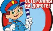 ИНСПЕКТОР ДПС В  ДЕТСКОМ САДУ